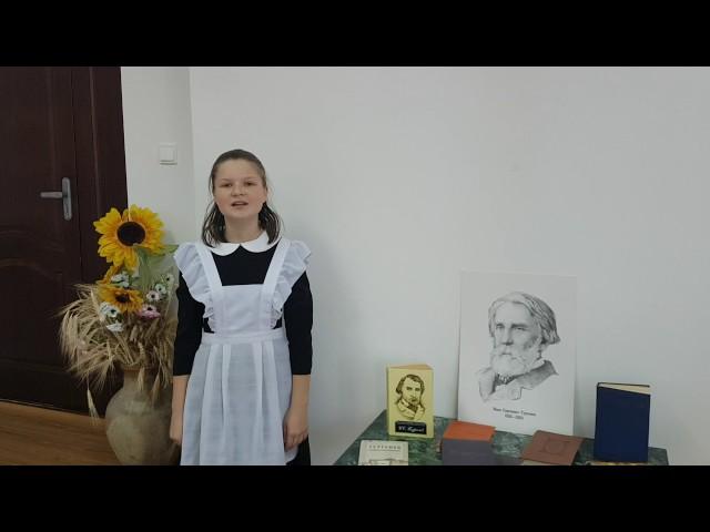 Изображение предпросмотра прочтения – Петровскаясельская бибилотека читает отрывок изпроизведения «Близнецы» И.С.Тургенева