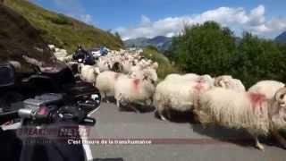 Embouteillage dans les Pyrénées