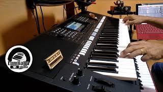双星情歌~ 许冠杰 Sam Hui 经典歌曲 Yamaha PSRS 775 电子琴经典歌曲演奏 Cover By : LumBaBa