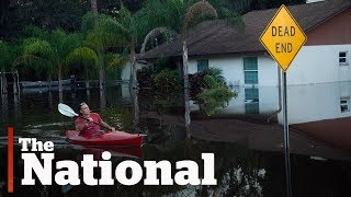 Florida faces long road to recovery after Hurricane Irma