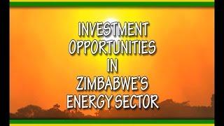 Millennials Zimbabwe: Investment Opportunities