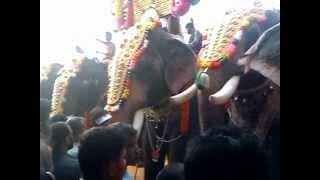mangalamkunnnu ayyappan and thechikottukavu ramachandren,pambadi rajan,thiruvambadi sivasundar
