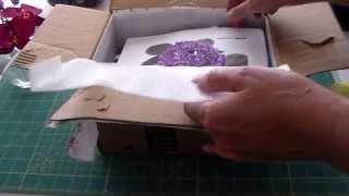 Посылка с фиалками от Маши.Package with Violets from Masha