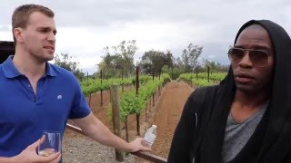Stock Trader Lifestyle: Wine Tasting In California