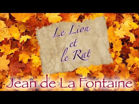 Le Lion Et Le Rat Fable De La Fontaine Youtube