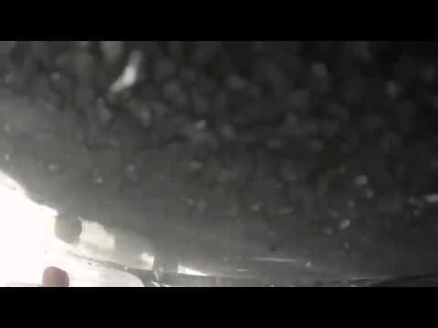 Олень влетел в Автобус ДТП! Авария! Видеорегистратор