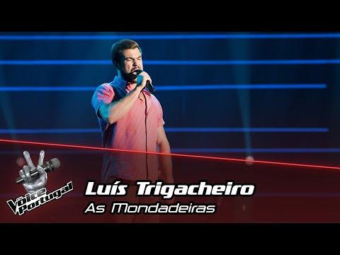 Luís Trigacheiro  -