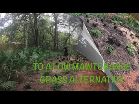 How to Create a Low Maintenance Yard