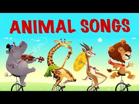 İngilizce  Bebek ve Çocuk Şarkıları (Altyazılı)   İngilizce Çizgi Film Şarkıları   Akıllı Bıdık