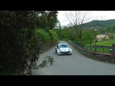 Tour De Corse ERC 2013 [HD]