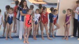 Спортивная гимнастика. 1 юношеский разряд.