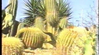 Mallorca - Tamaran Jeep Safari 17/10/1997 Tour Tramuntana Part 1