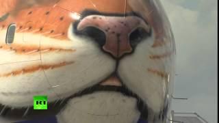 روسيا تكشف عن سبب رسم صورة النمر السيبيري على الطائرة بوينج الجديدة
