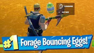 Forage Bouncy Eggs hidden around the island Location - Fortnite