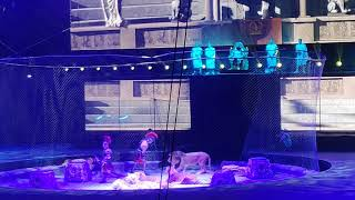 Лужники#представление#Запашных#тигры#львы#
