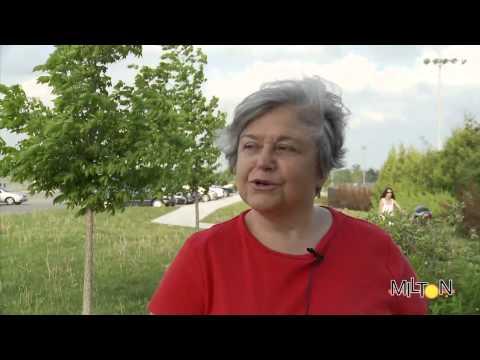 Cindy Lunau Council Ward 3 - Mario Belvedere Remembered