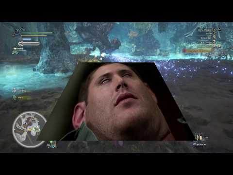 The Monster Hunter Experience Vol 1