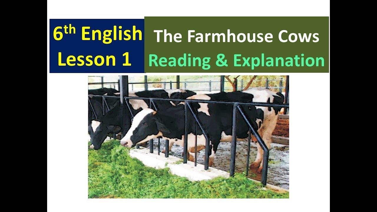 Chatsaal Class 6th My English Companion Lesson 1 Reading Youtube