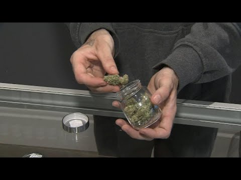 Business Report: How much pot do Canadians actually smoke?
