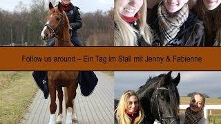Follow us around - Das alltägliche Leben im Stall