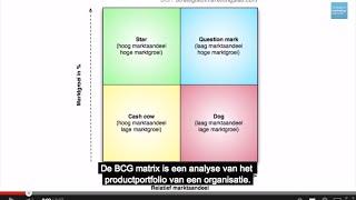 BCG matrix maken