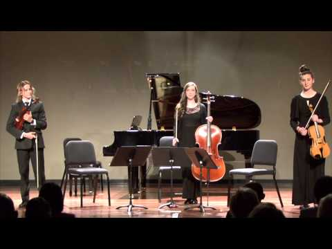 The Fine Arts Center Presents a Concert of Chamber Music