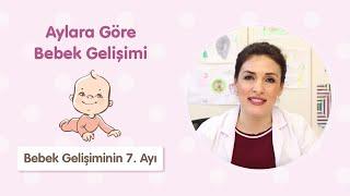 Bebek Gelişiminin 7. Ayı - Dr. Aylin Şimşek