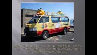 先日広島レモン大使に就任した、AKB48、NMB48の市川美織さんに、レモン...