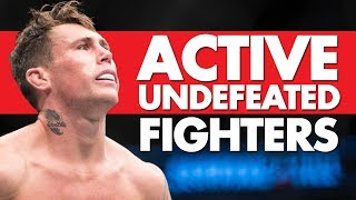 Top 10 Active Undefeated MMA Fighters