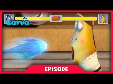 LARVA - STREET FIGHTER LARVA | Cartoon Movie | Cartoons For Children | Larva | LARVA Official