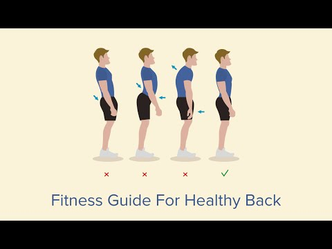 Fitness guide for healthy back