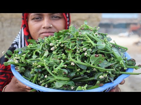Village Food Farm Fresh Malabar Spinach Seeds Recipe Healthy Fresh Malabar Spinach Seeds Fry Cooking