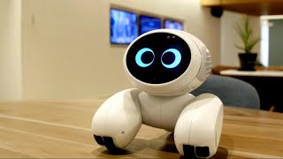 5 Cool Robots You Can Buy On Amazon (You Didn´t Know They Existed)