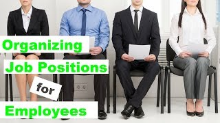 Organizing Job Positions for Employees