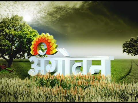 Sakal kolhapur advertisement tariff & rate card. Book newspaper.