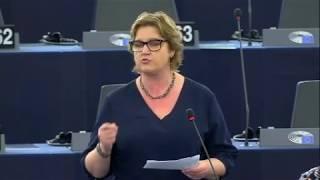Karin Karlsbro 11 Feb 2020 plenary speech on EU Viet Nam Free Trade Agreement