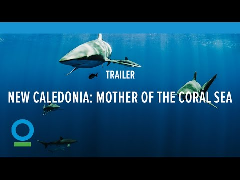 Teaser: New Caledonia, Mother of the Coral Sea