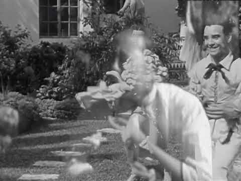 Stone in Focus- Aphex twin Fan video