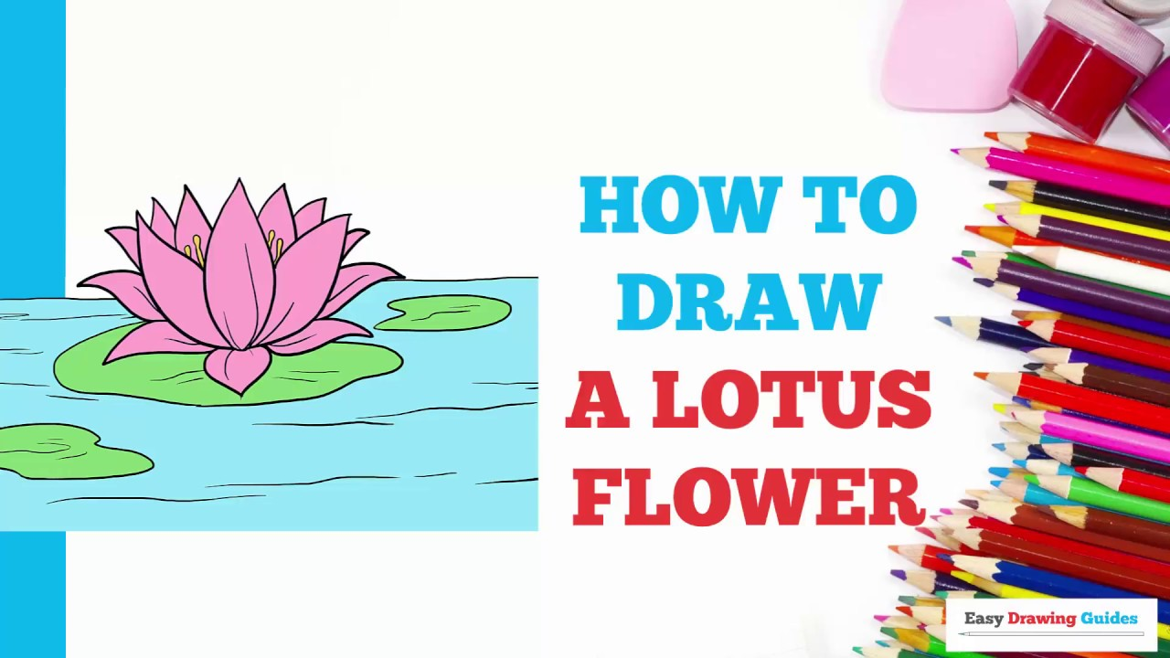 How To Draw A Lotus Flower In A Few Easy Steps Drawing Tutorial For