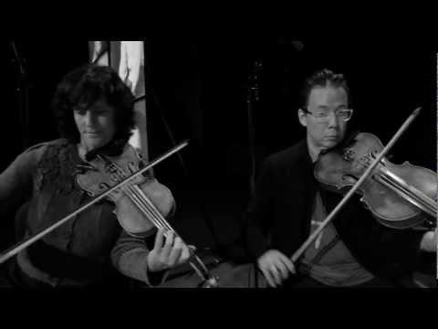 Bill Frisell / 858 Quartet - Arkansas Pt. 2