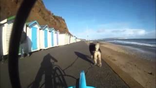 Christmas Dog Rig Ride (isle Of Wight)