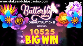 BIG WIN on BUTTERFLY STAXX 🚨 CASINO GAME BONUS ROUND !! from Live stream