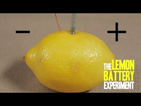 How to Make a Lemon Battery