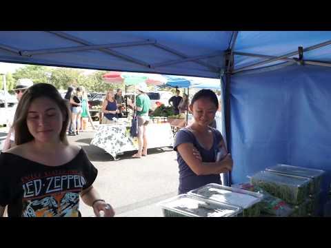 farmers-market-on-the-island-of-maui-upcountry-farmers-market-(pukalani)---all-you-need-to