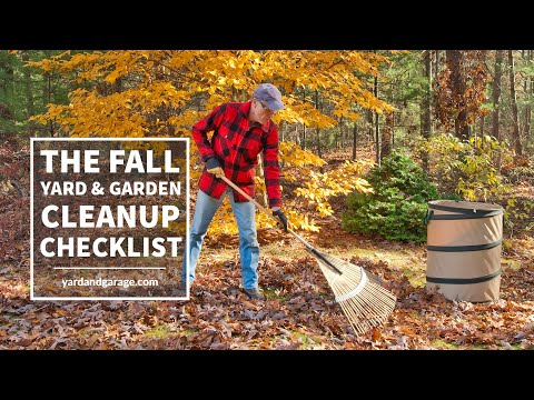 Fall Yard Clean Up: A Quick Checklist to Prepare Your Lawn