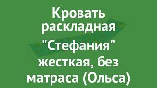 Кровать раскладная Стефания жесткая, без матраса (Ольса) обзор с85а производитель OLSA (Беларусь)