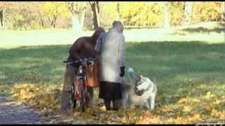 Чем хрупких девушек привлекают большие собаки?