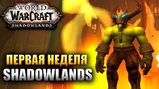 Первая неделя в Shadowlands WOW!