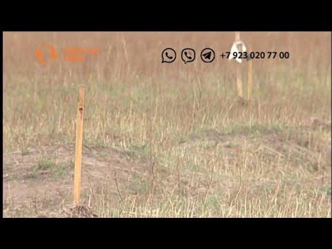 Как молодой семье получить земельный участок в Хакасии?