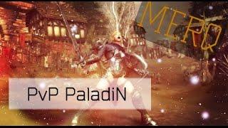 [NeverWinter]PvP Paladin 8 модуль